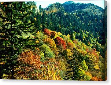 September Mountainside Canvas Print by Kevin  Sherf