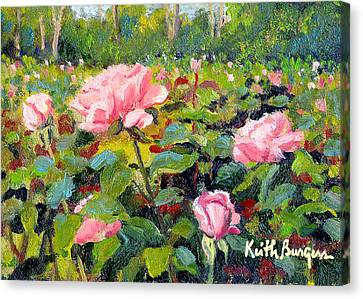 September Roses Canvas Print by Keith Burgess