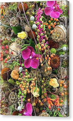 Septembers Collection Canvas Print by Tim Gainey