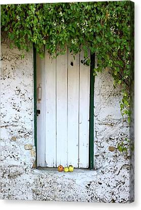 Serendipitous Door Canvas Print