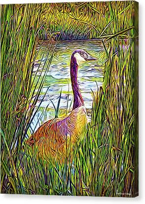Serene Goose Dreams Canvas Print