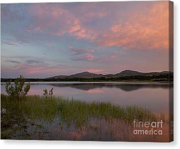 Serene Lake Canvas Print by Iris Greenwell