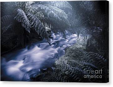 Serene Moonlit River Canvas Print
