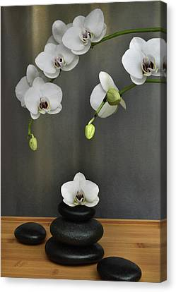 Canvas Print featuring the photograph Serene Orchid by Terence Davis