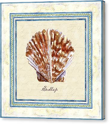 Serene Shores - Scallop Shell Canvas Print by Audrey Jeanne Roberts