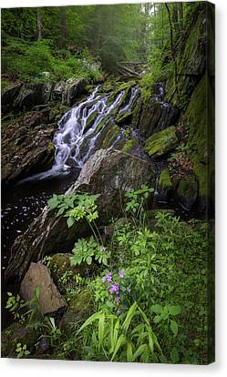 Canvas Print featuring the photograph Serene Solitude by Bill Wakeley
