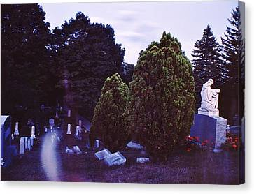 Serene Visitation Canvas Print by Don Youngclaus