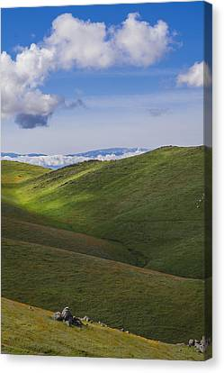 Serenity And Peace Canvas Print