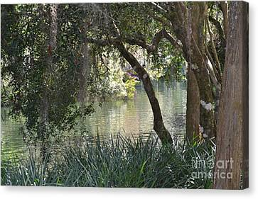 Canvas Print featuring the photograph Serenity by Carol  Bradley