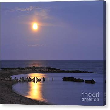 Serenity Connecticut Coastline Canvas Print by Cindy Lee Longhini