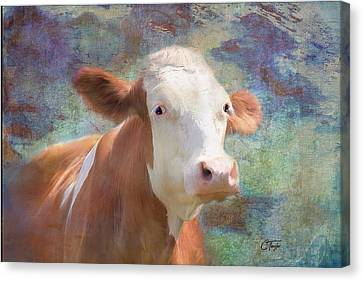 Canvas Print featuring the mixed media Serious Business by Colleen Taylor