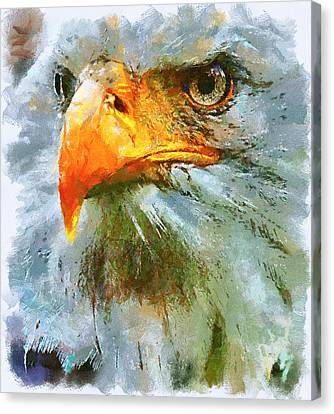 Serious Eagle Canvas Print by Yury Malkov