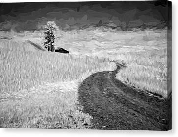Serpentine Passage II Canvas Print