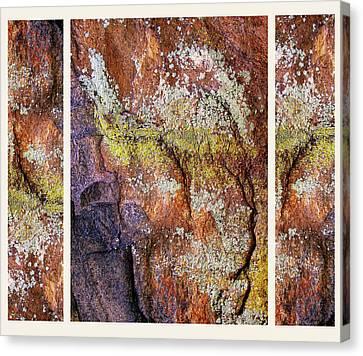 Set In Stone Triptych Canvas Print by Jessica Jenney