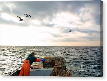 Setting Lobster Traps In Chatham On Cape Cod Canvas Print by Matt Suess