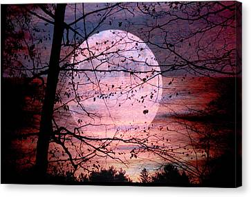 Setting Moon, Rising Sun Canvas Print by Paul Shefferly