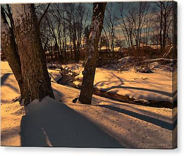 Setting Sun On A Winters Day Canvas Print