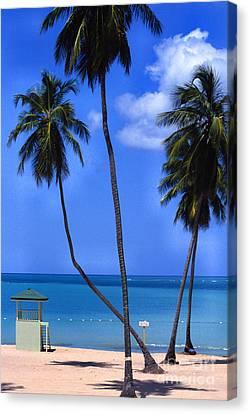 Seven Seas Beach Puerto Rico Canvas Print by Thomas R Fletcher