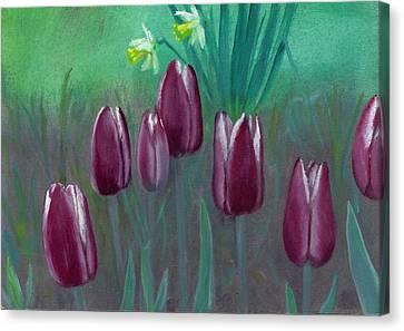 Seven Tulips Canvas Print by Laurel Ellis
