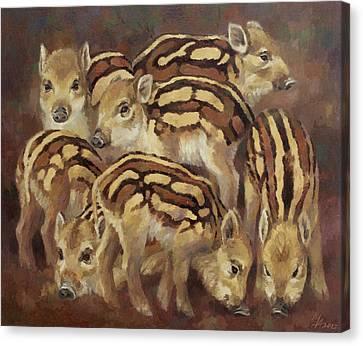 Seven Wild Boar Piglets Canvas Print by Attila Meszlenyi