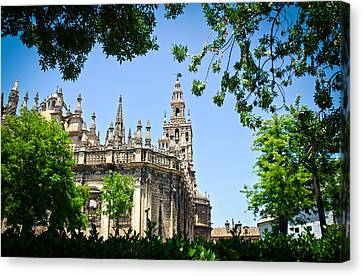 Seville - The Cathedral - A View Canvas Print by Andrea Mazzocchetti