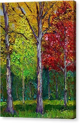 Sewp Fall Canvas Print by Stan Hamilton