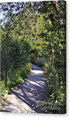 Shaded Walkways Canvas Prints Page 6 Of 6 Fine Art America