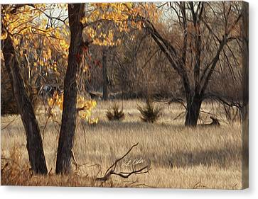 Shades Of Autumn Canvas Print by Bill Kesler