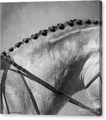 Michelle Canvas Print - Shades Of Grey Fine Art Horse Photography by Michelle Wrighton