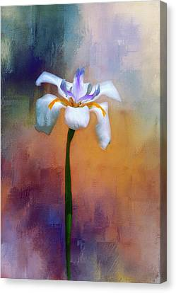 Canvas Print featuring the photograph Shades Of Iris by Carolyn Marshall