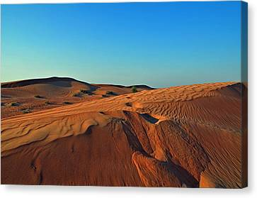 Shades Of Sand Canvas Print by Corinne Rhode
