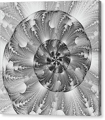 Shades Of Silver Canvas Print