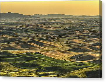 Shades Of The Palouse Canvas Print by Mark Kiver