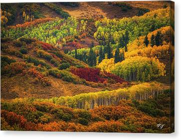 Canvas Print - Shades by Peter Coskun