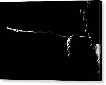 Shadow Boxing Canvas Print by Scott Sawyer