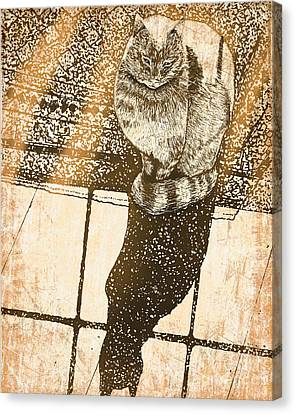 Shadow Cat Canvas Print by Laura Brightwood