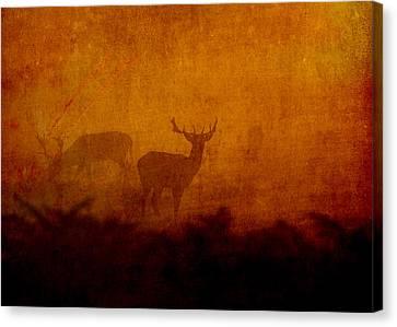 Shadow Deer Canvas Print by Sarah Vernon