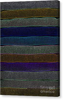 Appleton Canvas Print - Shadow Levels by Norma Appleton