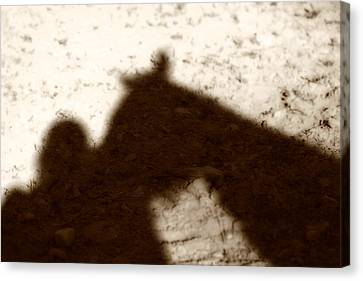 Shadow Of Horse And Girl Canvas Print by Angela Rath