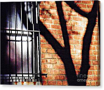 Shadow On The Wall Canvas Print by Sarah Loft
