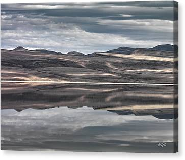 Shadow Reflections Canvas Print by Leland D Howard
