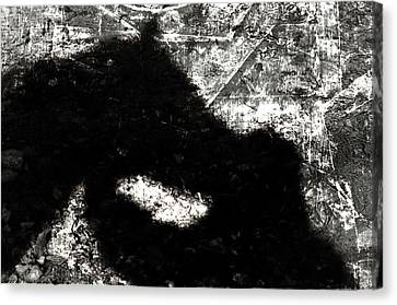 Shadow Talk Canvas Print