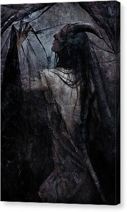 Shadow Veil Canvas Print by Cambion Art