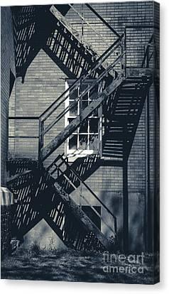 Shadowed Escape Canvas Print