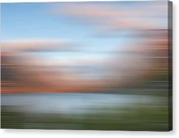 Shadowing Goose Island  Iv Canvas Print