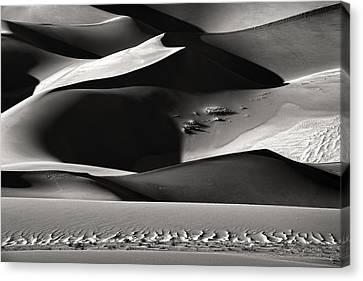 Shadowland Canvas Print by Izidor Gasperlin
