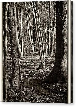 Shadowland Canvas Print by Michael Putnam