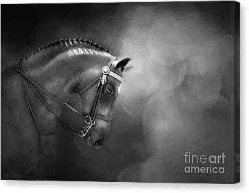 Shadows And Light Canvas Print by Michelle Wrighton