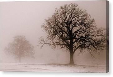 Shadows In The Fog Canvas Print by Linda Mishler