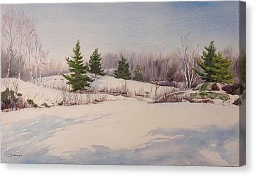 Shadows On Snow In The Canadian Shield  Canvas Print by Debbie Homewood